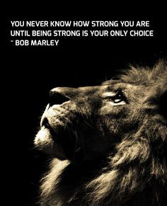 Be strong as a lion